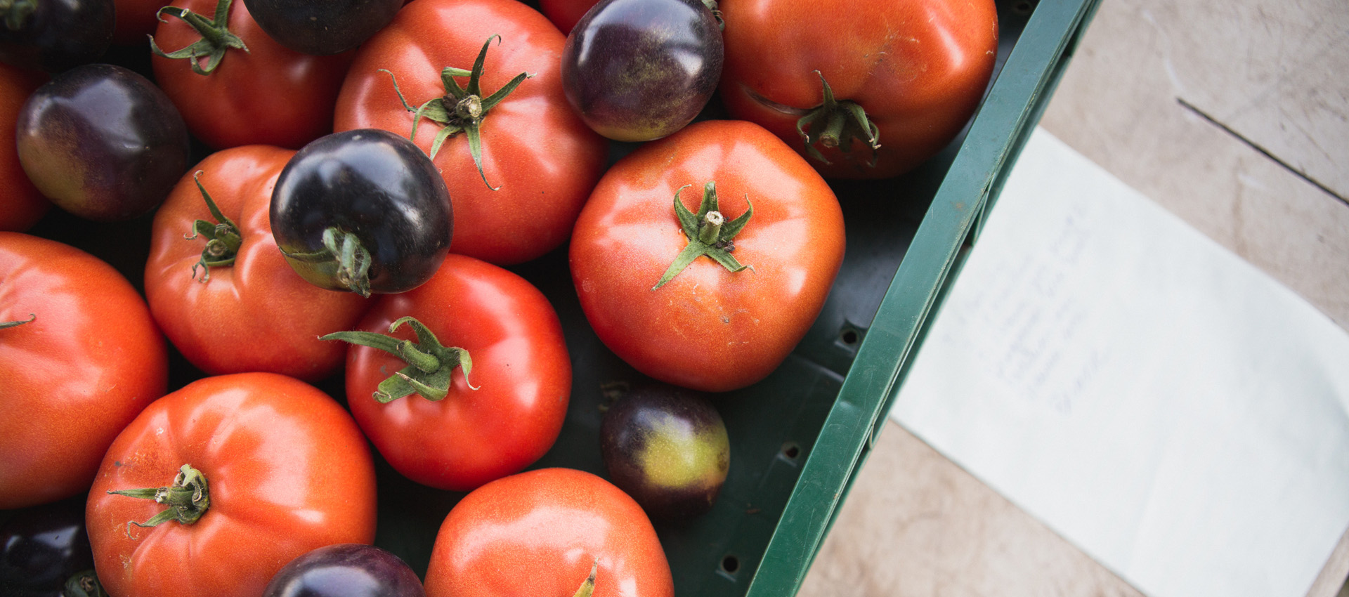Accueil tomates